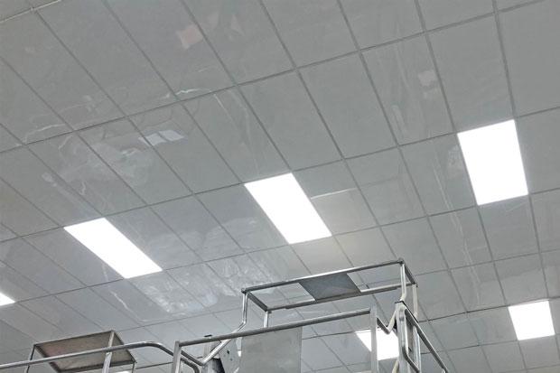 food-processing-plants-hygenic-ceiling-tiles-1-620.jpg